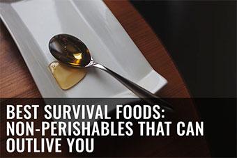 best-long-shelf-life-survival-foods-prepper-stockpile